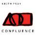 Keith Pray - <i>Confluence</i>